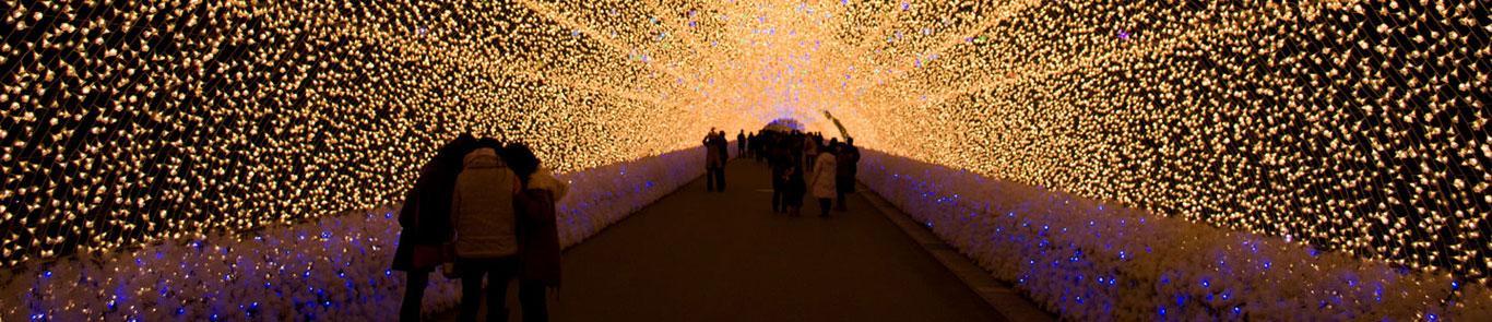 Winter Light Festival (Japan) banner ilikevents