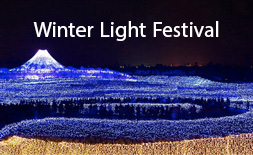 Winter Light Festival (Japan) logo ilikevents