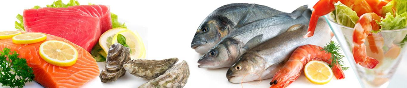 Seafex (Seafood expo Dubai) banner ilikevents