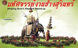 Surin's Elephant Roundup